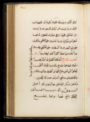 view Page from Tadkirat al-Kahhalin, an Arabic medical text in naskh script, concerning ophthalmology