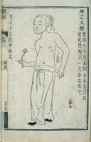 view Great tributary channel of the spleen, Chinese woodcut, 1817