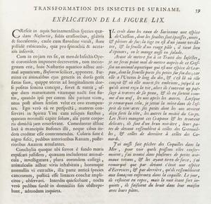 view Description of illustration L0035343