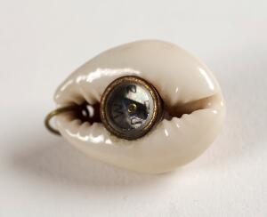 view Compass encased within a shell, good luck charm