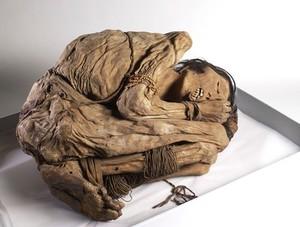 view Peruvian mummified male, c.1200-1400