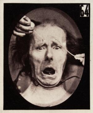 view Experiments in physiology. Facial expressions; Terror