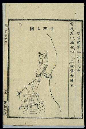 view Acu-moxa chart: points of the throat and neck, Japanese