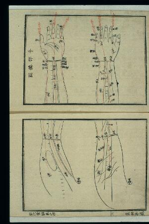view Acu-moxa chart: points of the hand and arm, Japanese woodcut