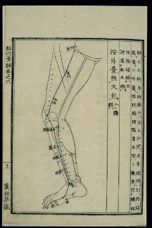view Acu-moxa chart: Spleen channel of foot taiyin in the legs