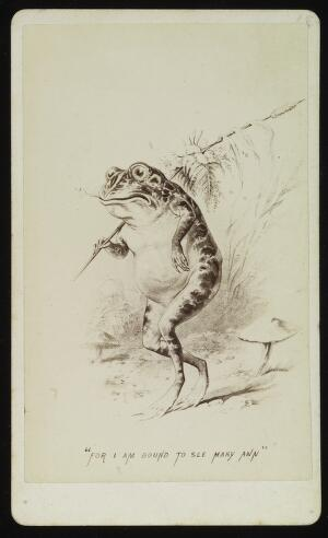 view A frog setting off to see his lady-friend. Photograph by J.P. Soule, ca. 1876, after a drawing.