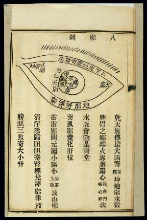 view Chinese woodcut: The eight regions (bakuo) of the eye