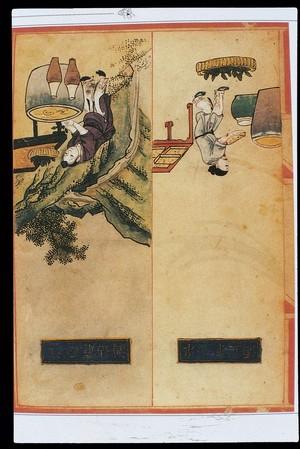 view Chinese Materia Dietetica, Ming: Magu liquor; Mungbean liquor