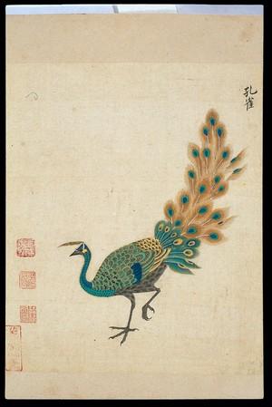 view Ming herbal (painting): Peacock