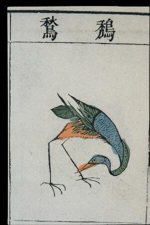 view Ming herbal (painting): Adjutant bird(?)