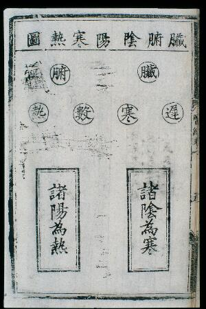view C15 Chinese medical primer: Table of paired concepts