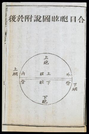 view C19 Chinese eye diagnosis chart showing Yin and Yang division