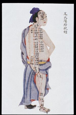 view Bladder channel of leg taiyang, C17/18 Chinese book art