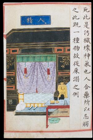 view 'Human essence/semen', C16 Chinese painted book illustration