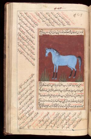 view A blue horse taken from a Persian manuscript on the natural sciences in Nasta'liq script