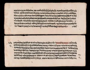 view A section of the Carakasamhita - sutrasthana (Charaka)