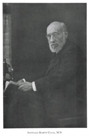 view Photographic portrait of Santiago-Ramon-Cajal M.D.