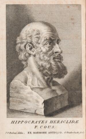view Hippocrates bust
