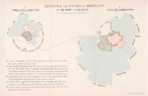 view Diagram of the causes of mortality in the army