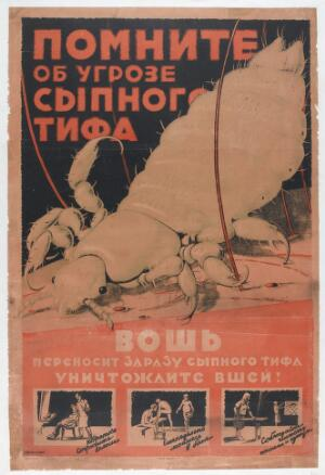 view The typhus louse, against which Russian citizens are urged to protect themselves by washing themselves and their clothes vigorously. Colour lithograph by Kaznacheev, 192-.