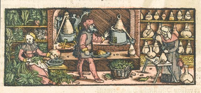 Two women and a man work at distilling the properties of plants and herbs.
