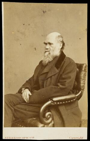 view Charles Robert Darwin. Photograph by the London Stereoscopic & Photographic Company.