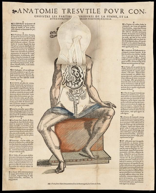 Fein Anatomie Des Tränenapparates Bilder - Anatomie Ideen - finotti.info