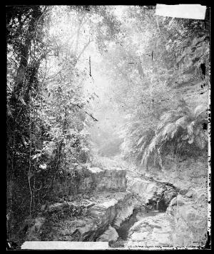 view Lalung, Formosa [Taiwan]. Photograph by John Thomson, 1871.