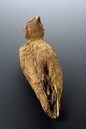 view Mummified bird, Egypt, 2000-100 BCE