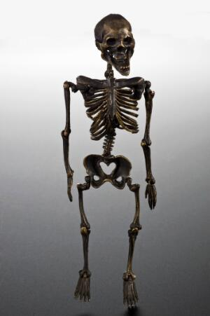 view Model of a skeleton, Europe, 1701-1800