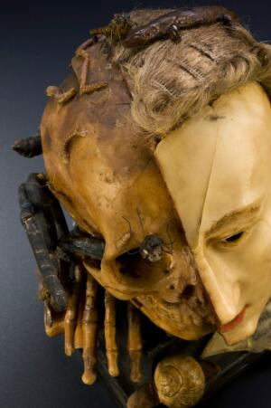 view Wax model of a female head depicting life and death, European, possibly 18th century. With plaque giving quote from Bible; Ecclesiastes, Chapter 1, verse 2; Vanitas vanitates et omnia vanitas