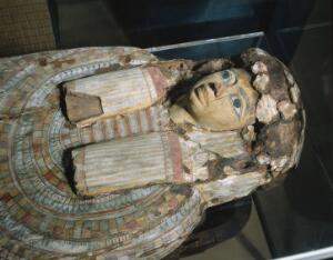 view Sarcophagus containing adult human mummy. Top three quarter view of object as displayed in Upper Wellcome Gallery of the Science Museum
