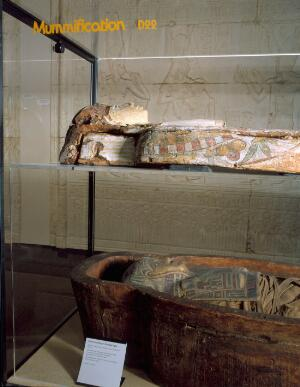 view Adult human mummy in sarcophagus, 323BC-31AD. Photographed on display in the Upper Wellcome Gallery of the Science Museum