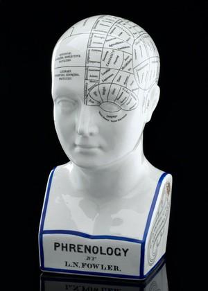 view Fowler's phrenological head, Staffordshire, England, 1879-18