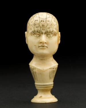 view Miniature ivory phrenological head, Europe, 1850-1914