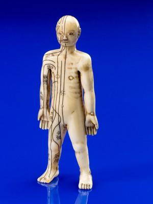 view Ivory anatomical figure, Japan, 1800-1920