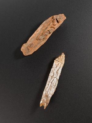 view Cinchona bark, Europe, 1601-1700