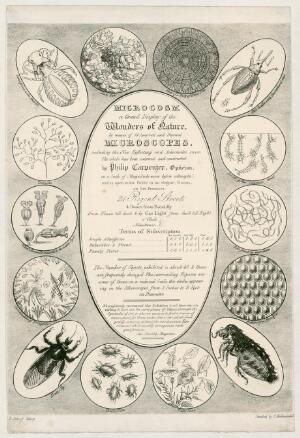 view Advertisement for microscopes, London, England