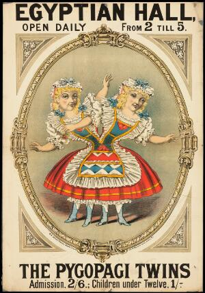 view Poster: Egyptian Hall, ... : The Pygopagi Twins.