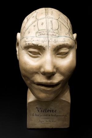 view Phrenological head, France, c. 1825
