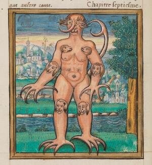 view Histoires Prodigieuses; the Monster of Cracow