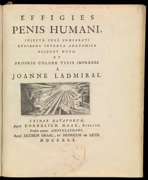 view B.S. Albinus. Effigies Penis Humani.