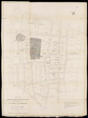 view Plan Showing the Ascertained Deaths from Cholera