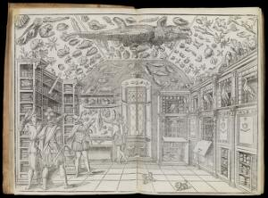 view Woodcut of the Wunderkammer room, from Dell'historia naturale
