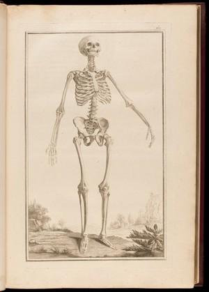view Pl. I. Male skeleton. Traite d'osteologie, A. Monro, 1759.