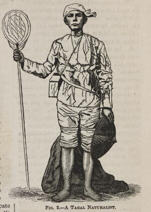 view Fig. 2 - A Tagal Naturalist. The phrenological journal, 1871.