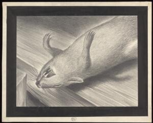 view A dead plague infected rat. Drawing by A.L. Tarter, 194-.