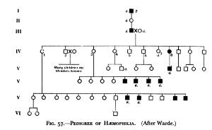 view Charts, Pedigree of Haemophilia (after Warde). Charts, Pedigree of Haemophibia (after Klug).