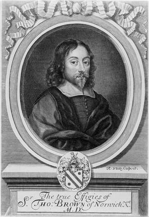 view Portrait of Sir Thomas Browne