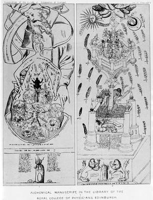 view Alchemical Manuscript